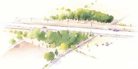 habitat Fragmentation drawing